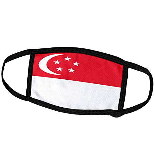 Promini Monatsmaske - InspirationzStore Flaggen - Flagge von Singapur - Singapurrot und weiß mit Halbmond und Sternen Asien Asien Weltland - Staubmaske Outdoor Schutzmaske