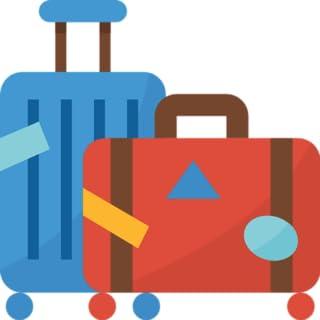 Viajero de turismo