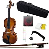 Paititi 4/4 Full Size Artist-100 Student Violin Starter Kit with Brazilwood Bow Lightweight Case, Shoulder Rest, Extra Strings, Rosin and Fingerchart (4/4)