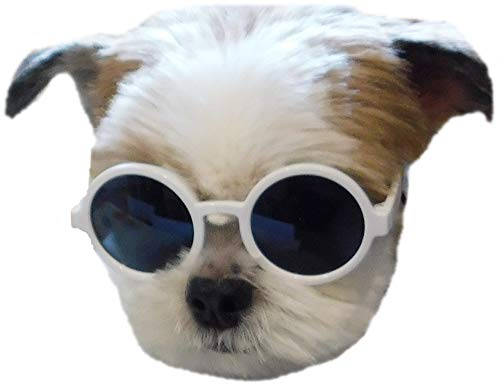 G016 Dog Pet Round Sunglasses Goggles for Small Dogs up to 15lbs (White)