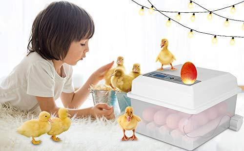 InLoveArts Digital Egg Incubator, 16 Eier Haushalt automatisch drehende Eier Digital Hatcher mit Turner-Temperaturregelungsfunktion, Drehen von Eiern für Hühnereier, Enteneier, Tauben-Eier