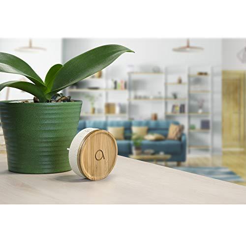 AVIDSEN Bamboo Funk Türklingel, umweltfreundlich, Bambus/recycelter Kunststoff, ohne Batterien, 150 m Reichweite, IP44 wetterfest, 32 Klingeltöne