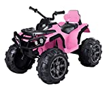 VALUE BOX Kids ATV 4 Wheeler Ride On Quad 12V Battery Powered Electric ATV Realistic Toy Car with 2 Speeds, Easy Button, Music, Built-in USB, Spring Suspension, LED Lights and Horns (Pink Black)