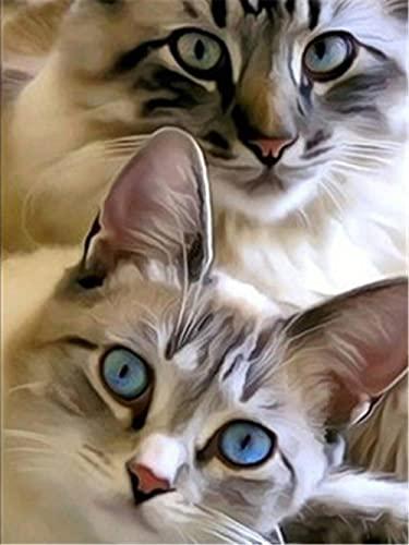 ZMGYA Genuine Puzzles Cat with Blue eyes-5000 Puzzles para Adultos Es Un Buen Regalo para Amigos Rompecabezas Desafiantes para,Juego de Rompecabezas y Juego Familiar,