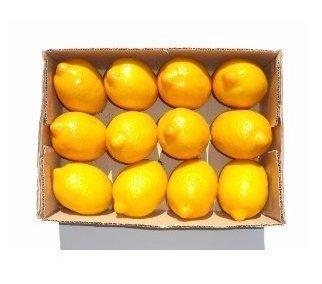 Jellbaby 12?Künstliche Zitronen Faux Kunststoff Fruit Home Party Decor Display