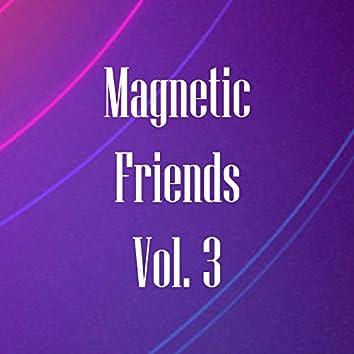 Magnetic Friends, Vol. 3