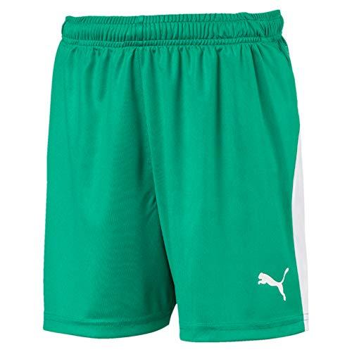 PUMA Kinder LIGA Shorts, Pepper Green White, 176