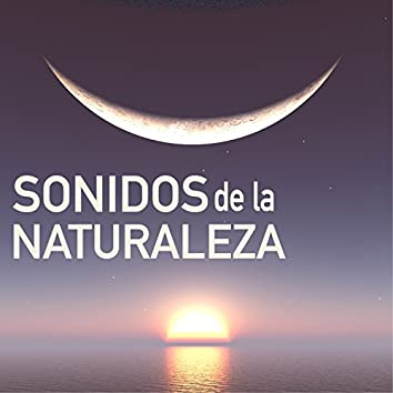 Sonidos de la Naturaleza para Descansar - Ondas Curativas para Relajacion Mental