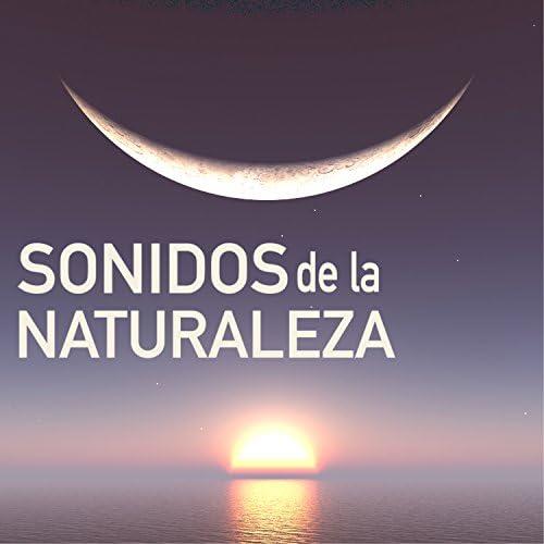 Sonidos de la Naturaleza Star