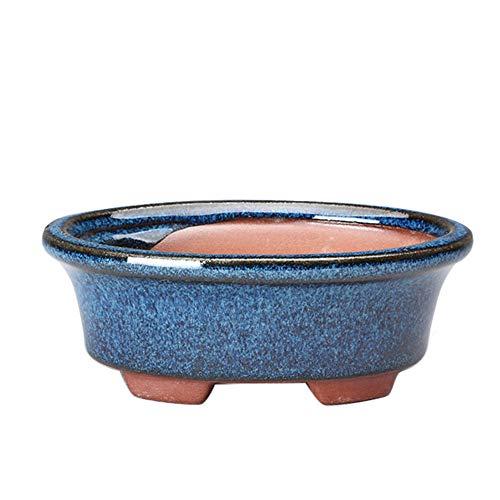 Loriver Maceta de Bonsai China Ovalada, Maceta esmaltada Azul, decoración del jardín del hogar, 13,8 * 9,3 * 5 cm