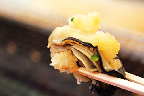 牡蠣 糸島 殻付き牡蠣 漁師直送 福岡 九州 船越 3kg(30個〜36個)船越牡蠣小屋 服部屋