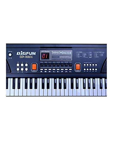 Vizn™ Electronic Piano Keyboard 61 Keys with LED Display and Microphone