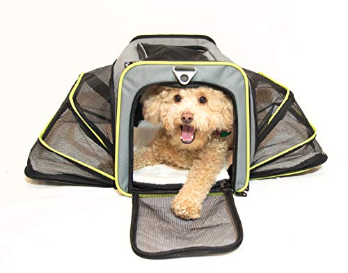 PETS GO2 Airline-Approved Pet Carrier