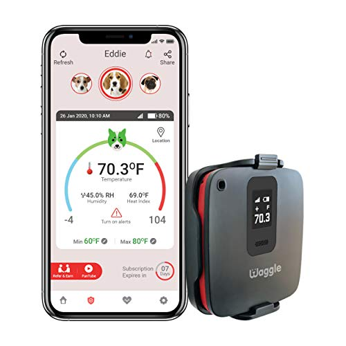 Waggle RV/Dog Safety Temperature & Humidity Sensor (Built-in GPS) with 4G Verizon Cellular   Wireless Remote Pet Temp Monitor with 24/7 Email/SMS Alerts   No WiFi Required   RV Power Loss Alert