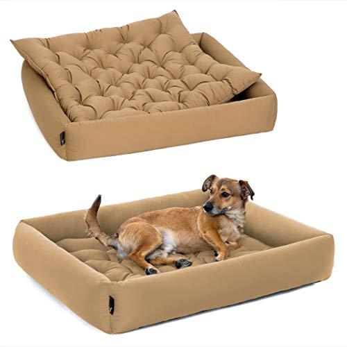 Pointer | Hundebett mit Hundekissen - orthopädisch, waschbar, bequem (XXL - 100x90 cm, Beige)
