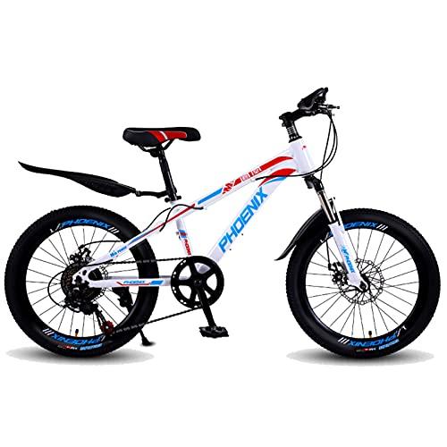 Axdwfd Infantiles Bicicletas Marco de Acero de Alto Carbono de Bicicleta de 20 Pulgadas, Adecuado para Montar al Aire Libre de 9 a 14 años, con Manillar de 180 ° giratorias (Color : Blue)