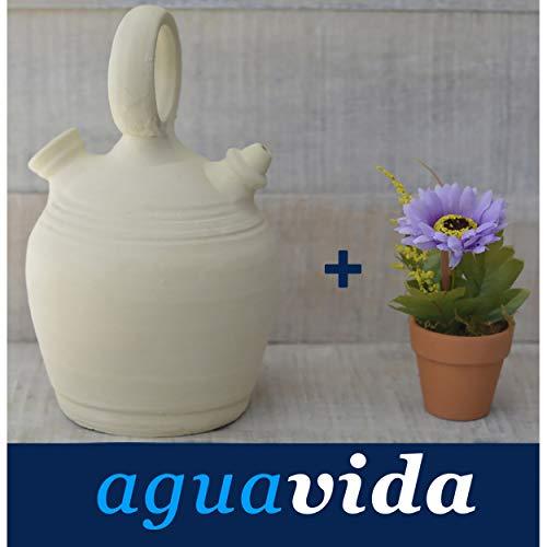Hogar y Mas Set de Planta y Botijo dispensador de Agua H2O, 3 LTS Aprox. Sistema Natural de enfriamiento sostenible.