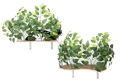 On2 Pets Cat Canopy Shelves with Leaves Handcrafted in USA, A Curved Set of 2 Wall Mounted Shelves in Evergreen