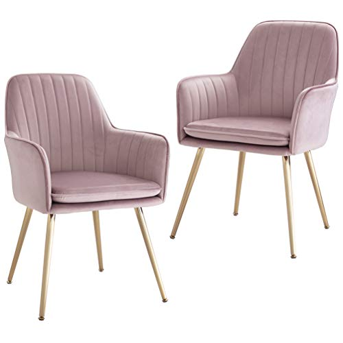 Five Stars Furniture Accent Living Room Leisure Armchair Velvet Fabric Dining Chair with Golden Metal Legs (Purplish Pink) Set of 2