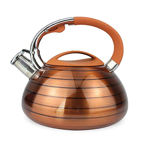 Bouilloire à sifflet pour cuisinière à Induction - Induction et Toutes Les Sources de Cuisson, Facile à Ouvrir, 3L