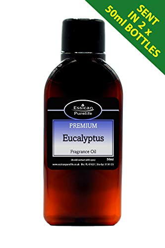 Huile parfumée Eucalyptus pour fabrication de bougies et de bain (100 ml)