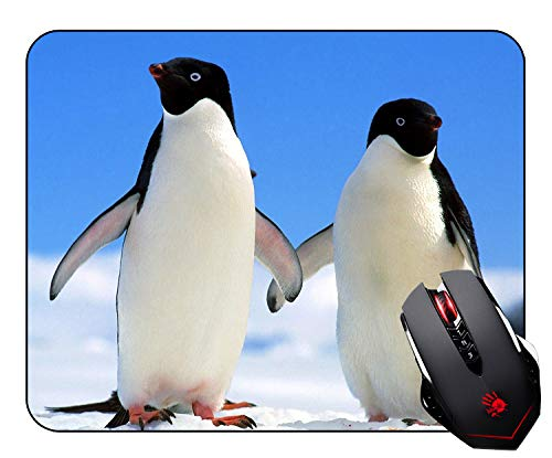 Cute Penguins Curve Mouse pad Customized Non Slip Rubber Mosue Pad Mouse pad Gaming Mouse Pad