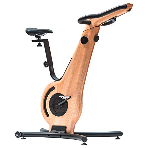 Lowest Price! NOHrD Indoor Exercise Bike - Ash