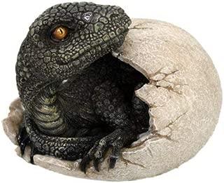 Jurassic Era Predator Velociraptor Breaking Out of Egg Dinosaur Figurine Hatchling Collectible Figurine Statue