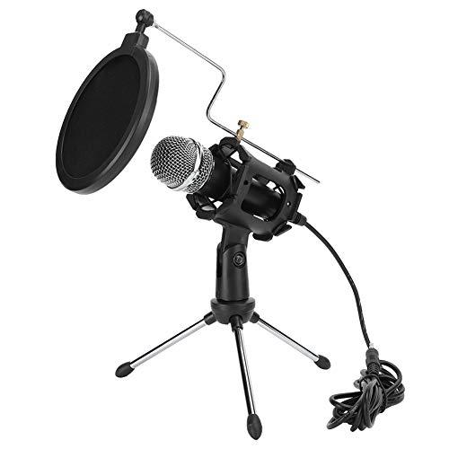 Ensemble de microphone professionnel, mini ensemble de micro portable, enregistrement de microphone de capacité, prise et utilisation, convient aux instruments de musique, à la radio, aux podcasts, au