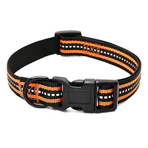 Mile High Life Night Tiras Reflectantes Dobles Collar de Perro de Nylon (Naranja, X-Small Neck 23 cm- 33cm -9KG)