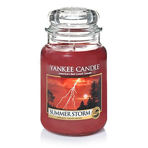 Yankee Candle Summer Storm Large Jar Candle, Fresh Scent