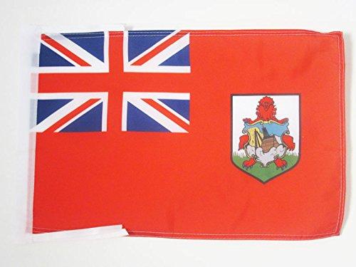 AZ FLAG Flagge Bermuda 45x30cm mit Kordel - Bermuda Fahne 30 x 45 cm - flaggen Top Qualität