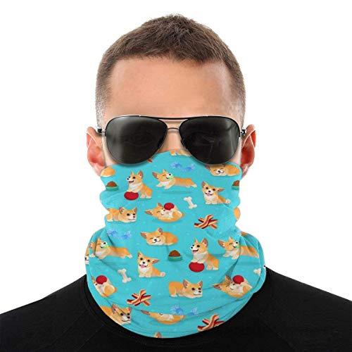 Bandeau, écharpe Bandana sans couture élastique pour bébé chien Corgi, série de chapeaux de sport de résistance aux UV pour Yoga randonnée équitation moto