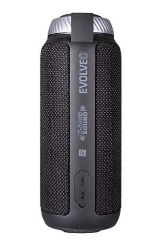 Evolveo SupremeBeat C5 Tragbarer Stereo-Lautsprecher 24W Schwarz - Tragbare Lautsprecher (Neodym, 4,8 cm, 24 W, 60-20000 Hz, 75 dB, Verkabelt & Kabellos)