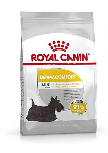 Royal Canine Adult Dermacomfort Mini 3Kg 3000 g 🔥