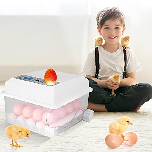 MATHOWAL Incubatrice Automatica, Incubatrice per uova per 16 Uova, Piccoli boccaporti per pollame Controllo Automatico della Temperatura e dell\'umidità per Gallina, polli, Anatre, Quaglia,oche