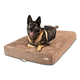 Big Barker 7″ Pillow Top Orthopedic Dog Bed for Large and Extra Large Breed Dogs (Sleek Edition)