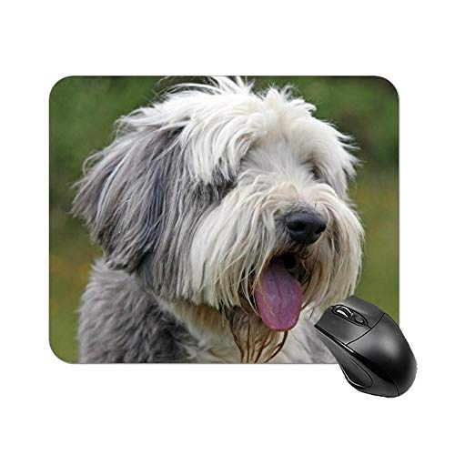 Cute Pug Dogs Desktop and Laptop Mouse pad 1 Pack 22x18cm/7x8.66inch