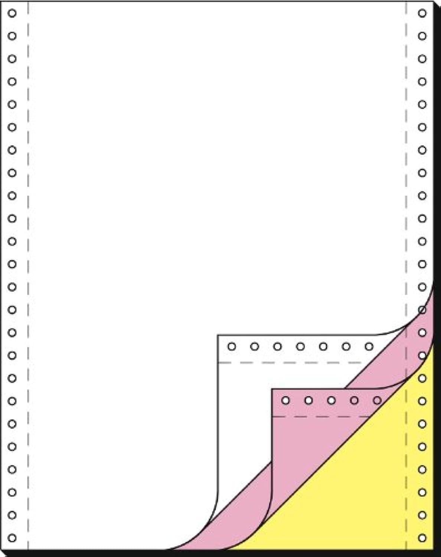 SIGEL 33243 Endlospapier 12 Zoll x 240 mm (A4 hoch), 60 53 57 g, 600 Sätze 3fach B000KTD0AS    | Vorzüglich