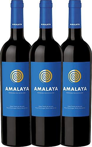 VINELLO 3er Weinpaket Amalaya Malbec Wein Tinto 2019 - Bodega Colomé mit VINELLO.weinausgießer | trockener Rotwein | argentinischer Wein aus Salta | 3 x 0,75 Liter