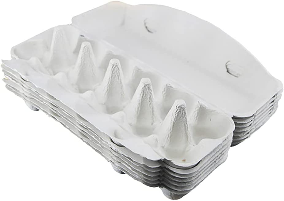 Hemoton 10Pcs Egg Today's only Cartons Popular standard Paper Trays Box Eg Folding Storage