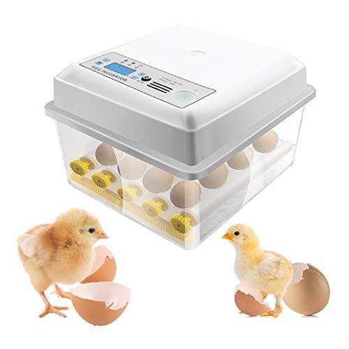 KKTECT Incubadora de huevos Control automático de temperatura Mini incubadora automática digital de 16 huevos con dispositivo automático de volteo de huevos para huevos de gallina   codorniz   ganso