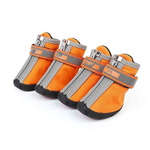 BXGZXYQ Zapatos para Mascotas Zapatos para Perros Zapatos De...