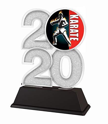 Trophy Monster 2020 - Trofeo de Karate (Oro, Plata o Bronce, Hecho de acrílico Impreso, 120 mm)