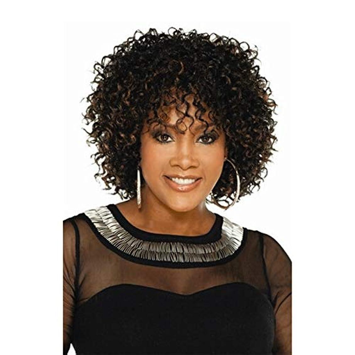 掘るバリケード匿名黒の女性のための女性の短い巻き毛のかつら、プレミアム合成かつら、弾む完全かつ自然な150%の密度 (色 : Brown)