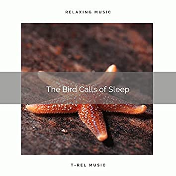 2021 The Bird Calls of Sleep