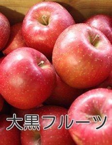 青森県 りんご ふじ りんご 訳あり 減農薬栽培 5kg