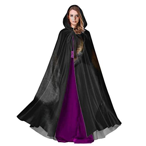 - Dackel In Halloween Kostüme