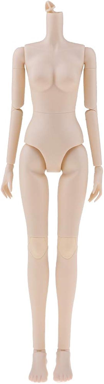 Prettyia Normal Skin 1 4 BJD 16 Joints Female Nude Body Modern Girl Doll Without Head for Mini Dollfie LUTS DOD Kurhn