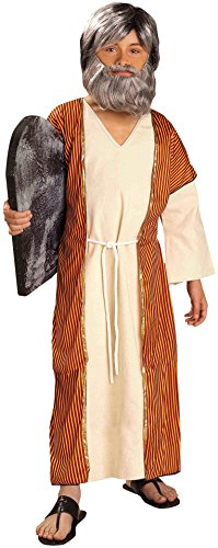 Christian halloween costume ideas - Forum Novelties Biblical Times Moses Costume, Child Large
